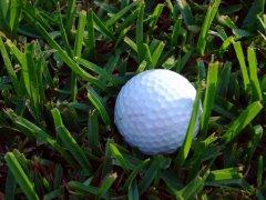 ゴルフのセルフプレーの必需品
