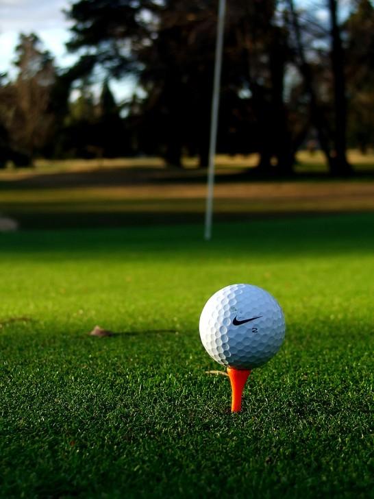 マスターズゴルフ 2015 注目選手
